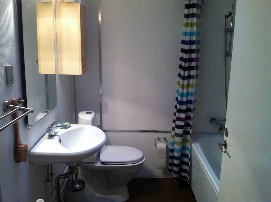 Toilet with bathtub and washing machine.