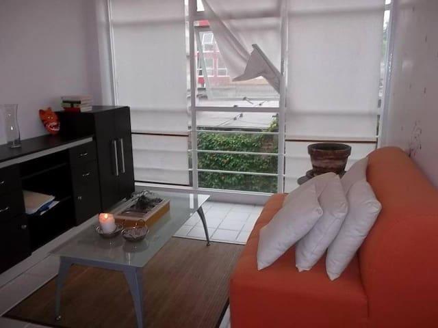Gran ubicación (ideal para persona sola o pareja) - Ciudad de México - Apartament