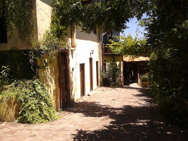 Casa Rústica-Quinta - Arouca