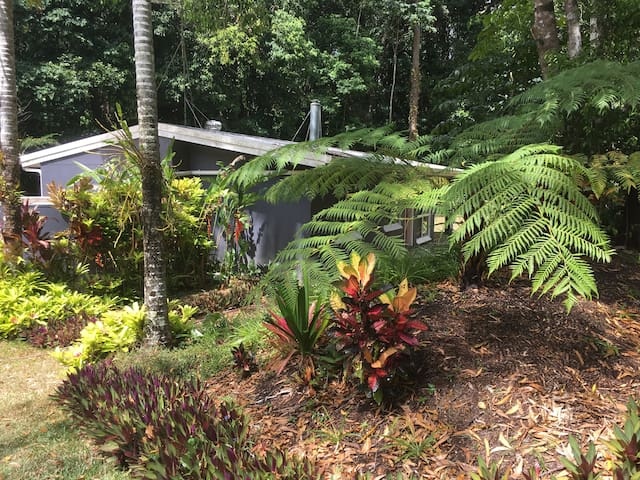Pet-friendly tropical retreat.