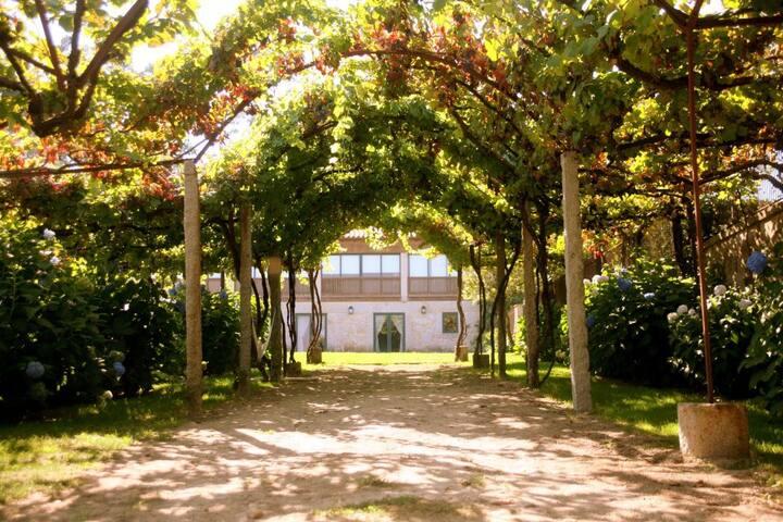 Quinta - Turismo Rural - Casa da Eira T3
