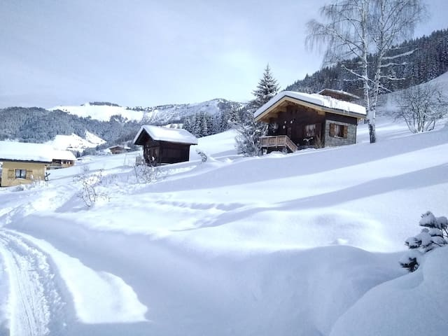Chalet cosy pour le cocooning