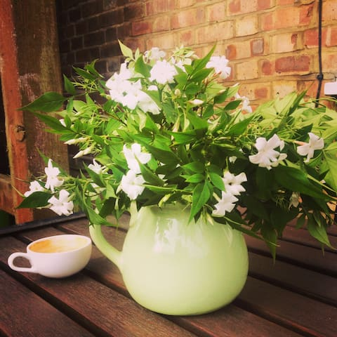 Jasmine and coffee in the garden