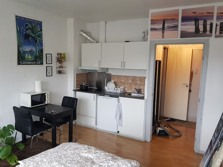Nice Studio apt in Close to Bus Stop & Shops