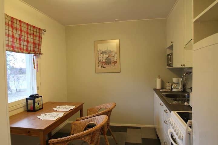 Apartment Pirtti for 2 person,free WIFI