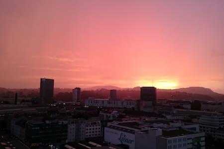 Ganz Linz auf einen Blick - Linz - Apartment