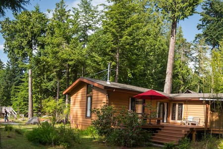 Savary Sunny Forest Cabin