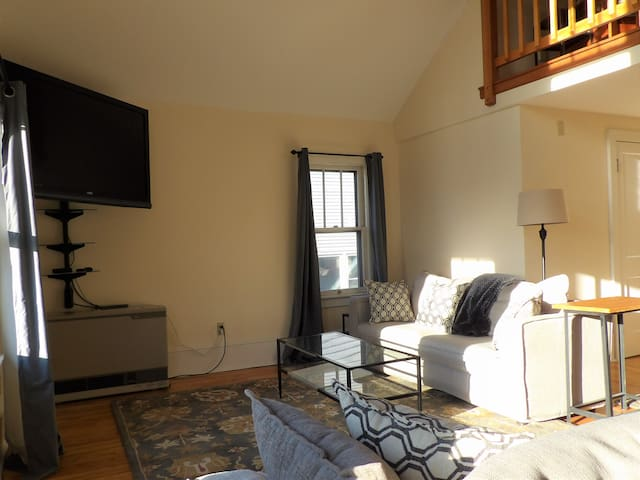 Living room with 55 inch flat screen television