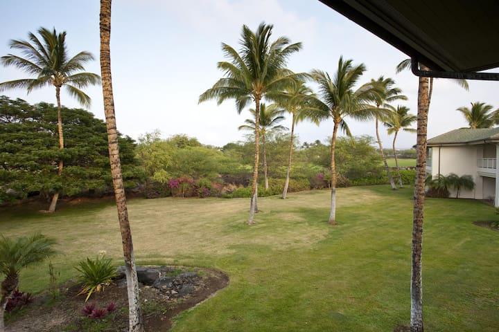The Islands at Mauna Lani K3
