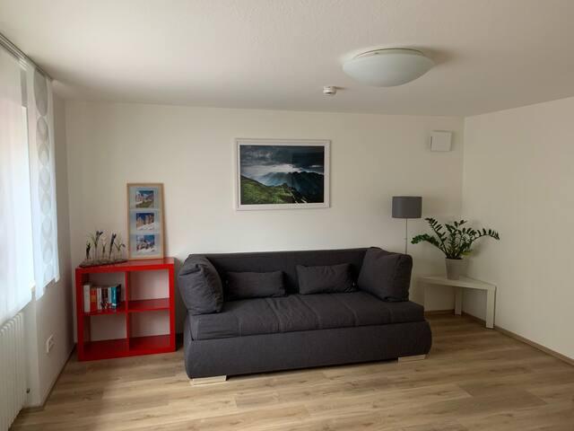 Neu renovierte Ein-Zimmer-Wohnung, zentrale Lage