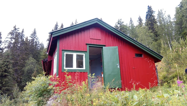 Cabin in the mountain close to Gvebseborg