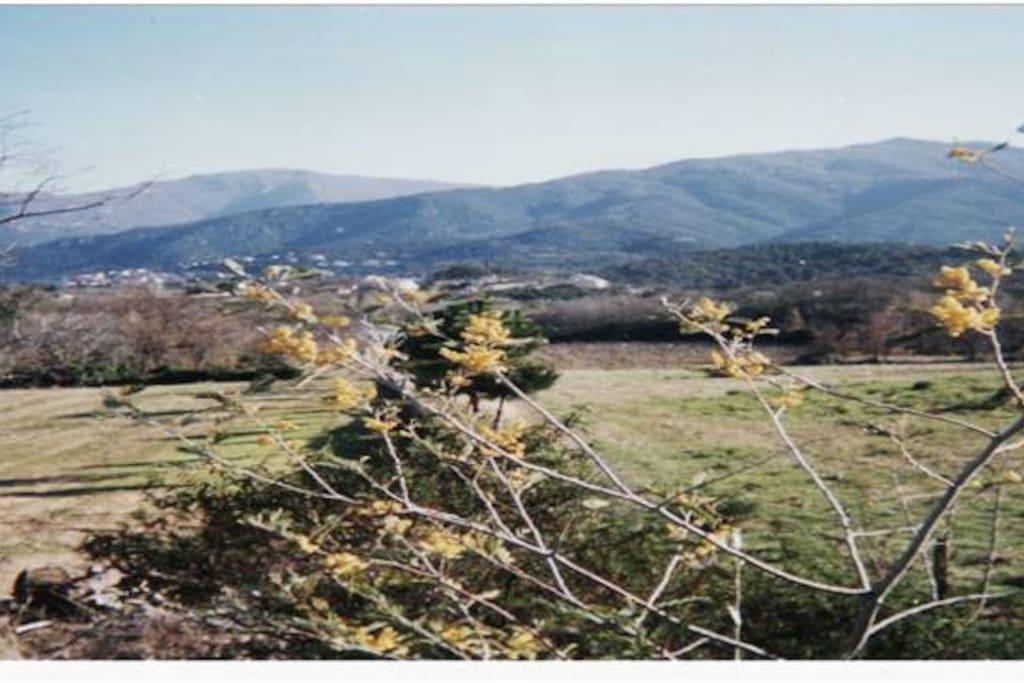 Notre village aux pied de la chaine des Albères