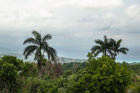 Beautiful home great ocean view