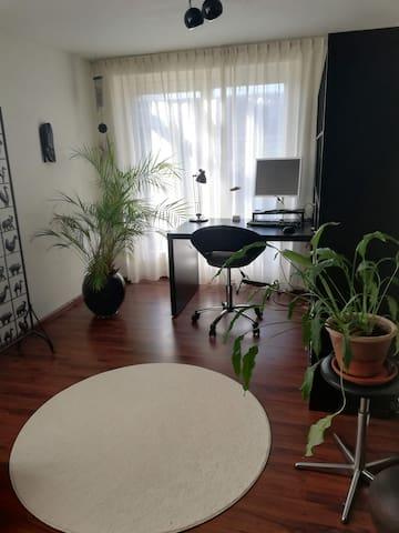 Rustige, lichte en ruime kamer in centrum Tilburg
