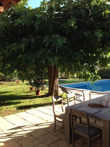 LARGE HOUSE IN PROVENCE , SPACIOUS AND FRIENDLY - - Fontvieille - House