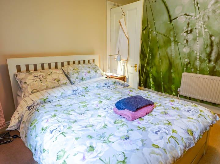 Gorgeous back bedroom in Phibsboro