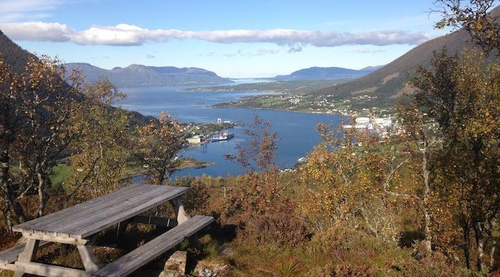 Bårdsnes in Tomrefjord