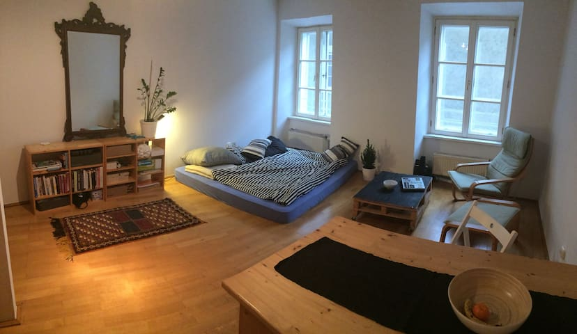 One Cosy little modern flat I fell in love with - Salzburgo - Apartamento