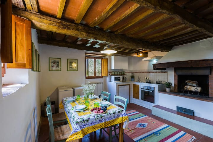 Cozy flat in the heart of Chianti - free parking