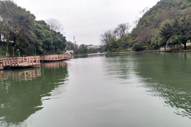 小区旁的桂湖