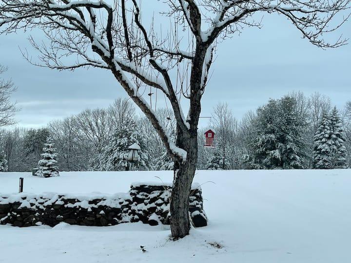 Beautiful Winter cabin, North Catskills/Greenville