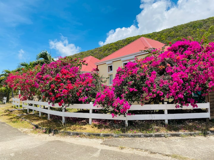 Villa les Bougainvilliers, proximité de la plage
