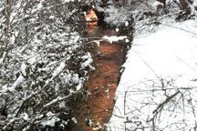 En hiver, le ruisseau qui coule le long du jardin