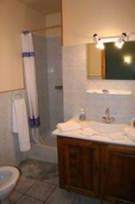 Douche et toilettes intégrées à la chambre