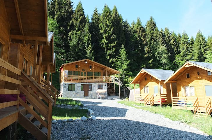 Mountain cabins - cottage 2