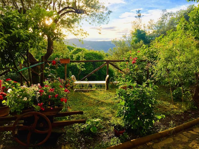 Beautiful Rural House in Cilento National Park