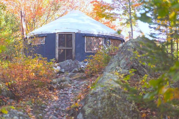 Pioneer Cottage-near Acadia