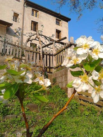 Porzione di casa rustica - Lugo di Vicenza - Casa