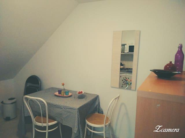 Charmant studio de 20 m² proche du centre - Angers - Leilighet