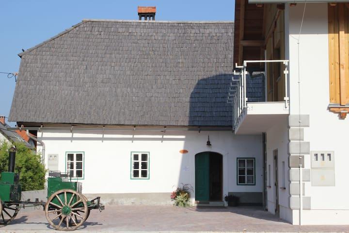 Traditional house Lepi Čeveljc - Gozd Martuljek - บ้าน