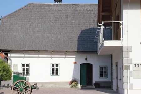 Traditional house Lepi Čeveljc - Gozd Martuljek - 独立屋
