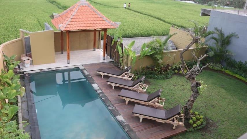 6 BR superior room & Breakfast with paddies view