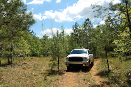 50acrs of exploration, camping, living with nature - Crawfordville - Tent