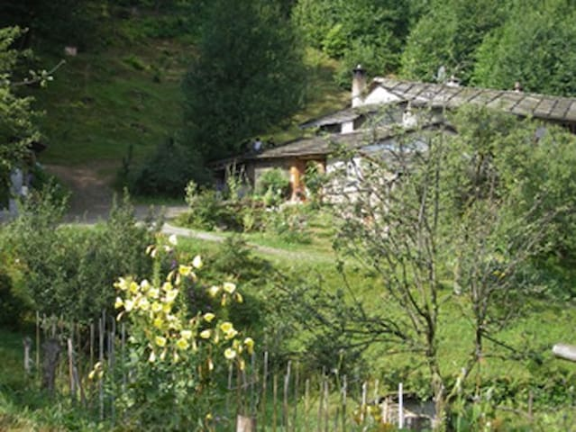 Accomodation in Agriturism - Luserna - Studentrum