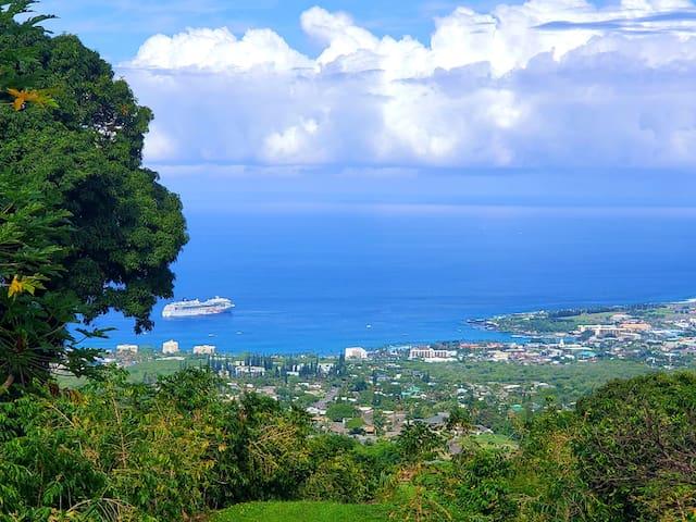 Ocean View Coffee Farm Residence