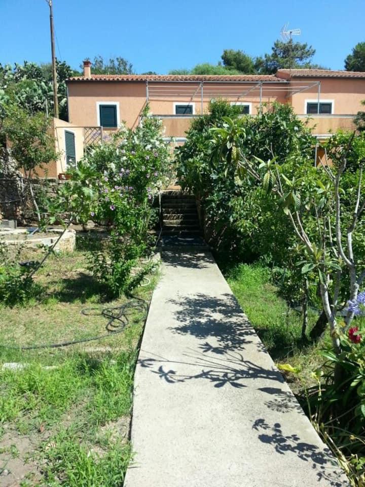 Monolocale centrale con giardino