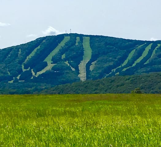 Summer view of Elk Mountain.  All season beauty and fun in the area.  Awesome location!  Close to restaurants and groceries.