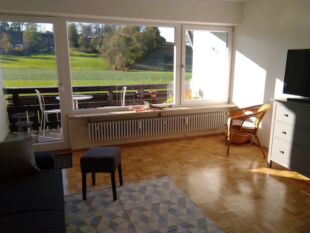 Sonnige, helle 3 - Zimmer - Wohnung mit Westbalkon