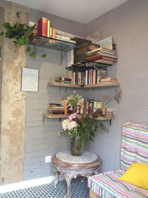 Pequeña sala de estar - biblioteca Little livingroom - library