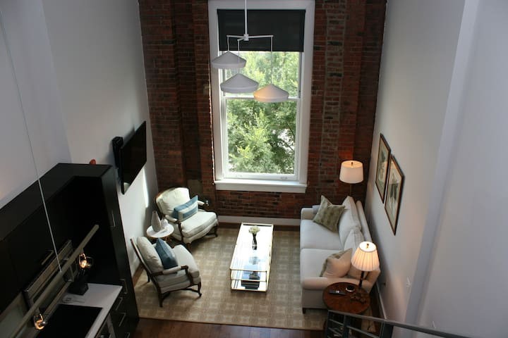 Beautiful Logan Circle Loft