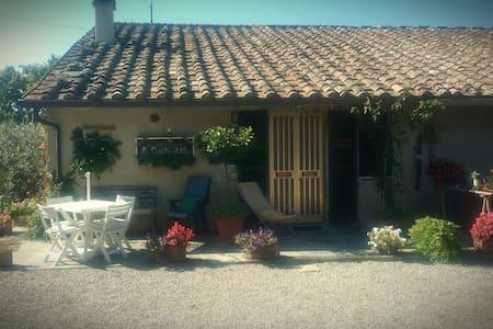 """""""La Casa tra gli Ulivi"""" CottageHouse"""