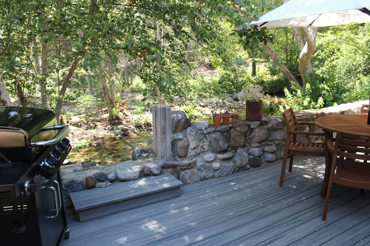 Back patio with entrance to river