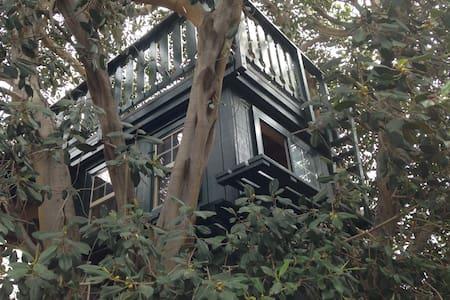 Treehouse Adventure - Brea - Cabana en un arbre