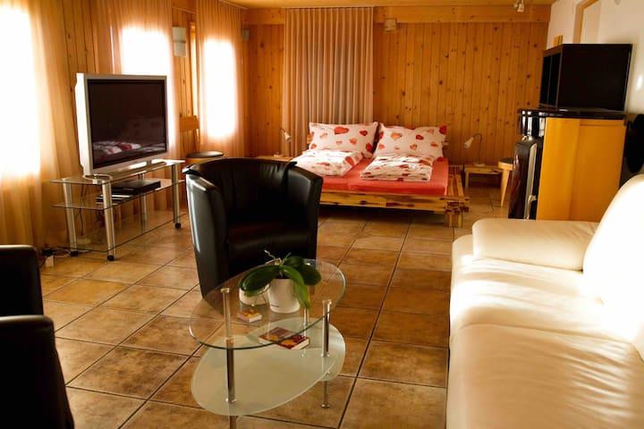 Heimelige und komfortable Wohnung - Aeschi bei Spiez - Apartemen
