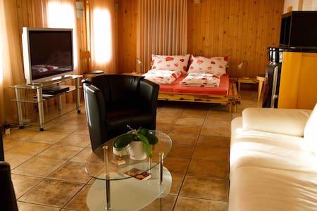 Heimelige und komfortable Wohnung - Aeschi bei Spiez - 公寓