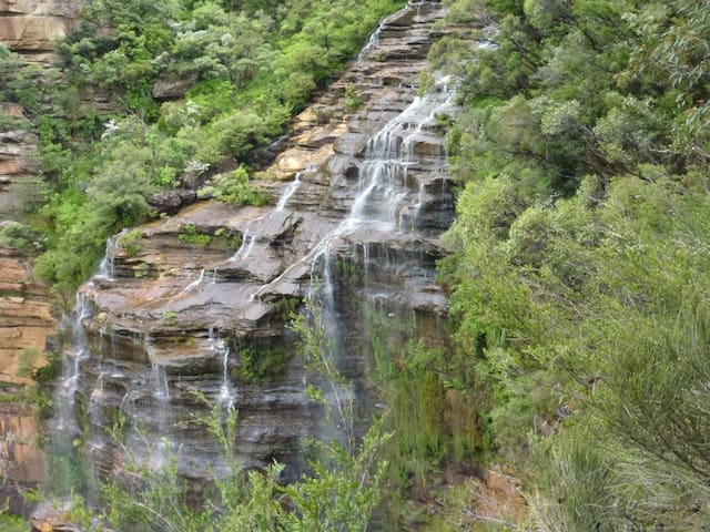 Bird Song Queen: Bushland Haven on National Park - Wentworth Falls - Hus